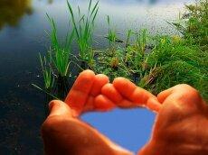 Фото: ecology.md