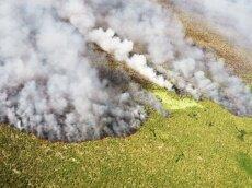 Фото: g1.globo.com