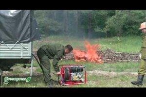 студенческий лесоохранный отряд
